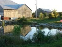 farm_2008